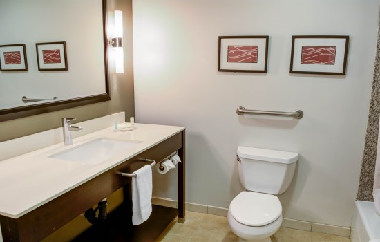 Comfort Inn Suites near Universal North Hollywood Burbank - Guest Room Bathroom